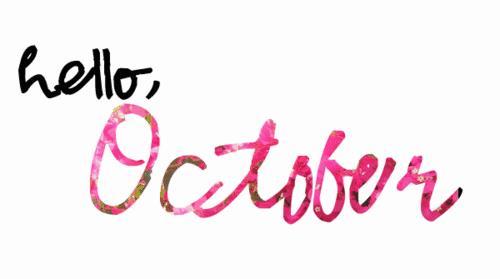 Newsletter — 3rd Oct 2017